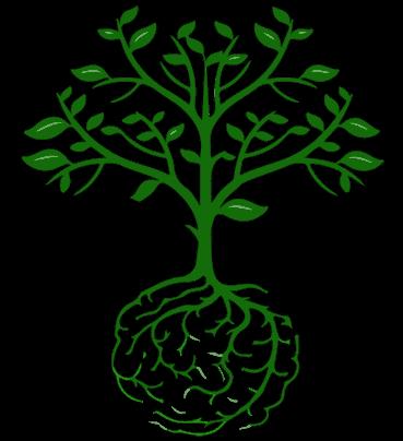 cervello-pianta